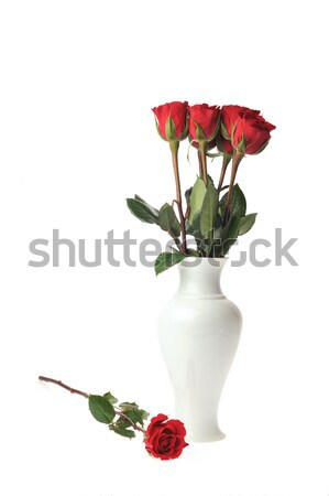 small childs overshoe with roses Stock photo © taden
