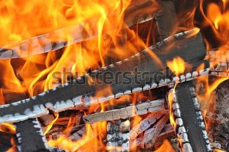 égő lefelé tűz utolsó absztrakt természet Stock fotó © taden