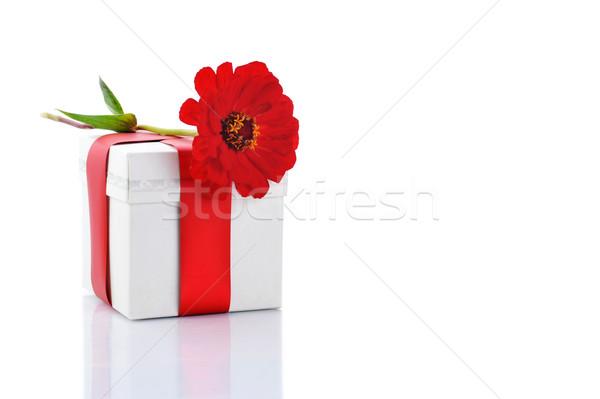 Ajándék doboz piros virág közelkép háttér élet Stock fotó © taden