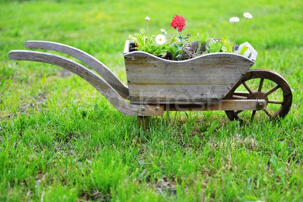 çiçeklik ülke bahçe çiçek el arabası yaz Stok fotoğraf © taden