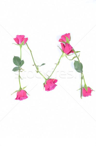 Mektup m gül güzellik sanat yeşil yazı Stok fotoğraf © taden