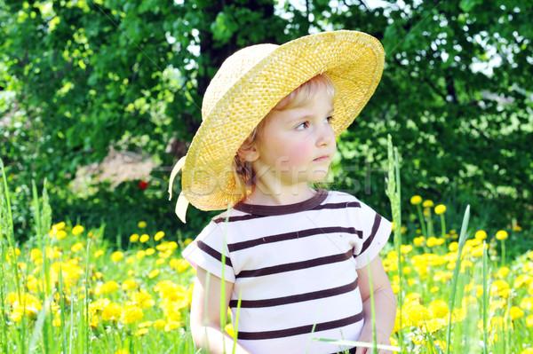 Nina campo nina sombrero de paja flor Foto stock © taden