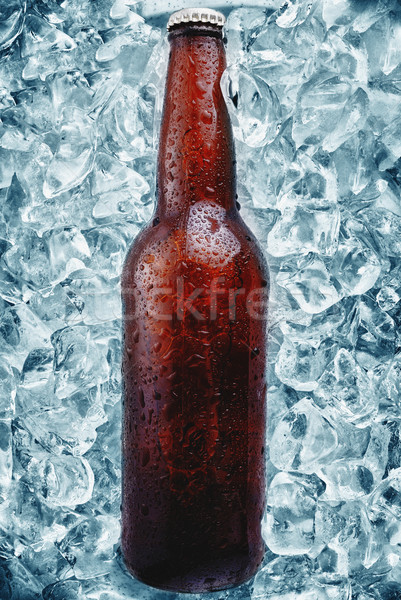 beer bottle Stock photo © taden