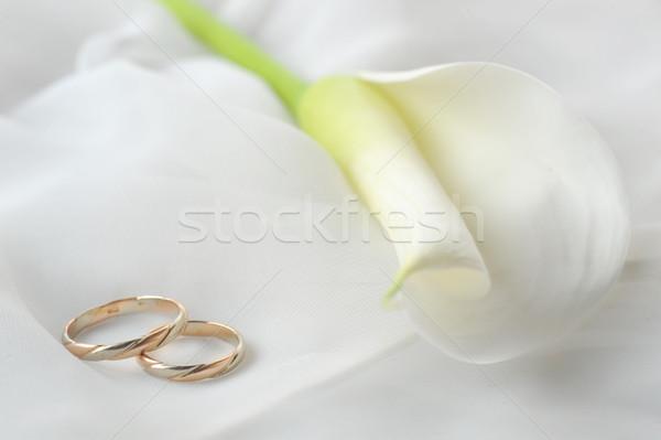 wedding rings and white flower on white  Stock photo © taden