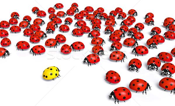 żółty biedronka tłum czerwony biedronki jeden Zdjęcia stock © TaiChesco