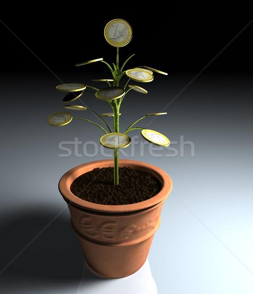 Um euro dinheiro pequeno árvore vaso Foto stock © TaiChesco