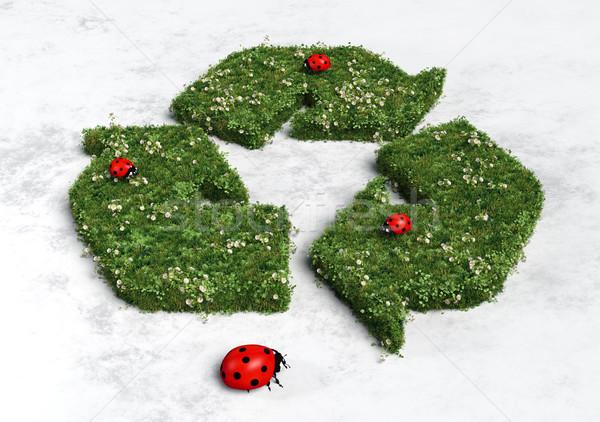 Reciclagem símbolo coberto grama flores três Foto stock © TaiChesco