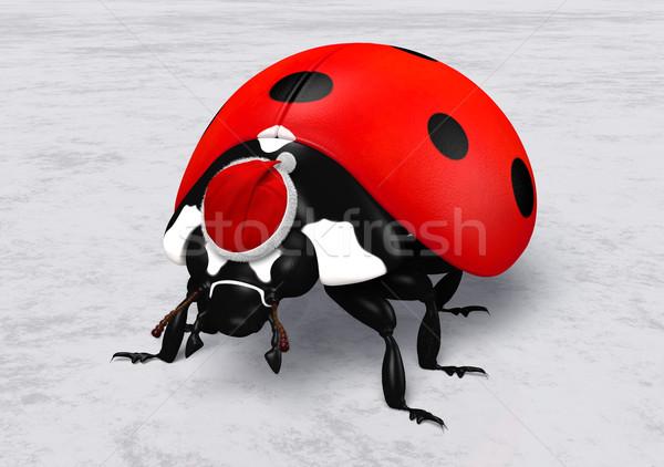 Katicabogár mikulás piros kalap közelkép fej Stock fotó © TaiChesco