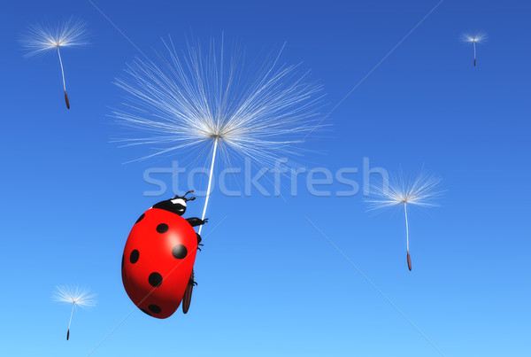 Floret carries a ladybug Stock photo © TaiChesco