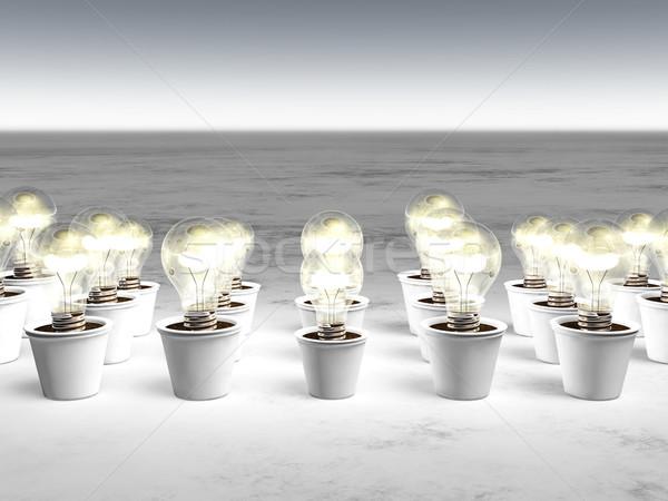Lâmpadas frio luz diferente crescente Foto stock © TaiChesco