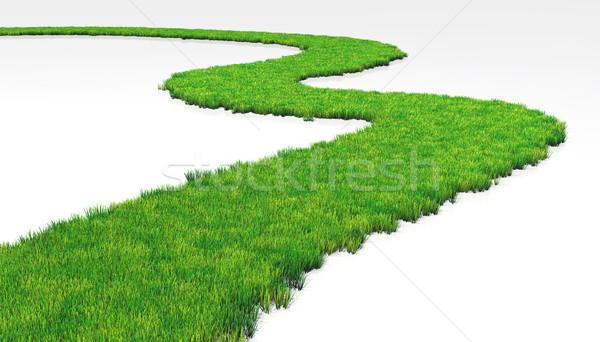 Gramíneo caminho gramado branco terreno grama Foto stock © TaiChesco