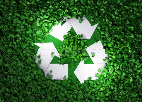 újrahasznosít szimbólum fű felső kilátás fehér Stock fotó © TaiChesco