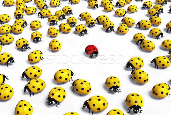 Piros katicabogár tömeg citromsárga katicabogarak egy Stock fotó © TaiChesco