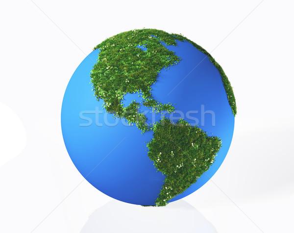 Amerikaanse continent gedekt gras bloemen 3D Stockfoto © TaiChesco