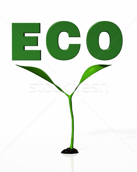 young plant under the ECO word Stock photo © TaiChesco