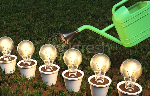 Fila lampadine bianco verde annaffiatoio erboso Foto d'archivio © TaiChesco
