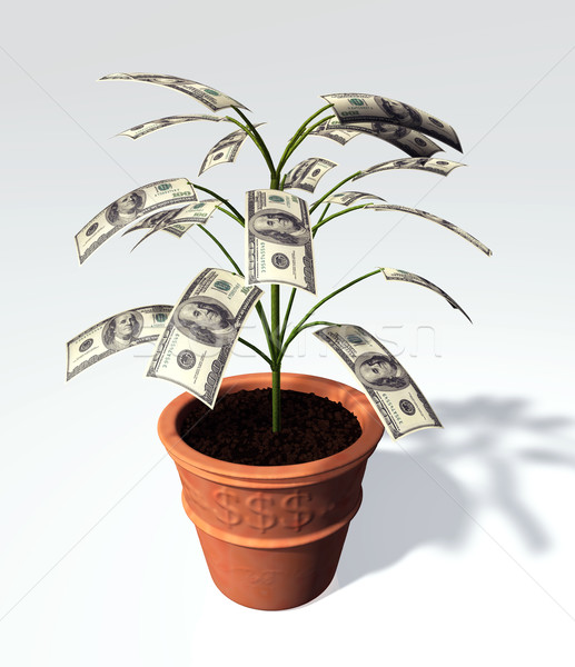 A hundred dollars banknote small tree in a vase Stock photo © TaiChesco