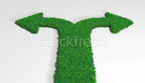 трава ковер Стрелки два инструкция Сток-фото © TaiChesco