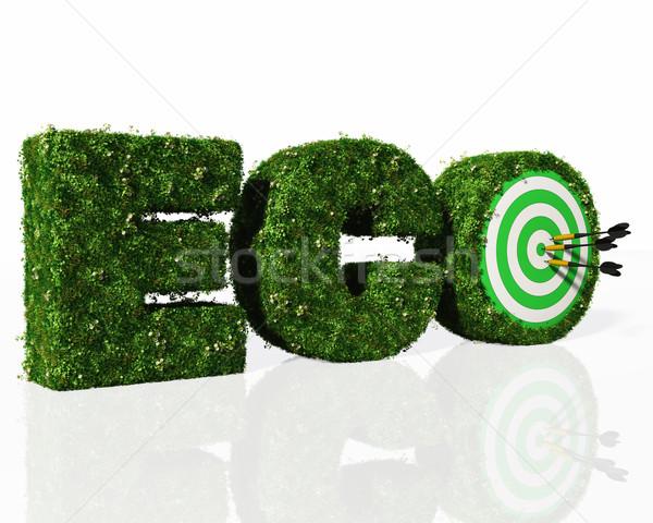 Эко слово трава дартс письма Сток-фото © TaiChesco