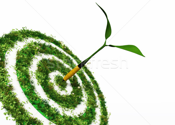 the aim is the environment Stock photo © TaiChesco