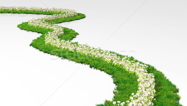 grassy path with flowers Stock photo © TaiChesco