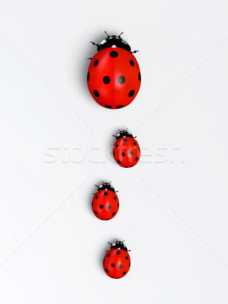 вертикальный Top мнение Ladybug три Сток-фото © TaiChesco