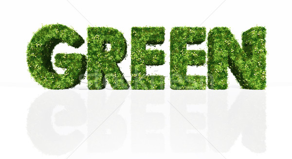 green word full of grass and flowers Stock photo © TaiChesco