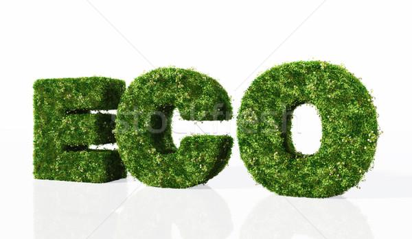 Eco palavra grama cartas coberto flores Foto stock © TaiChesco