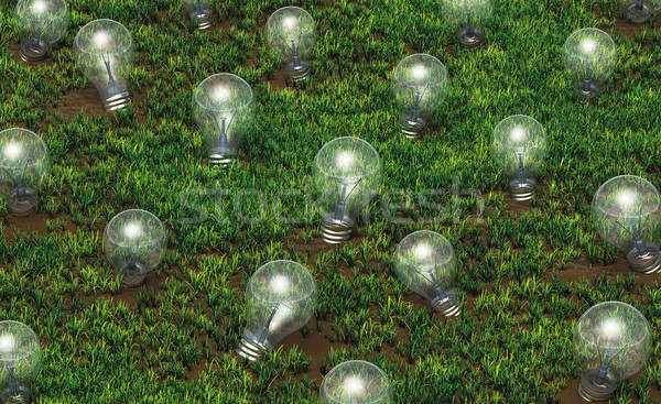 Cultivation of unlit light bulbs Stock photo © TaiChesco