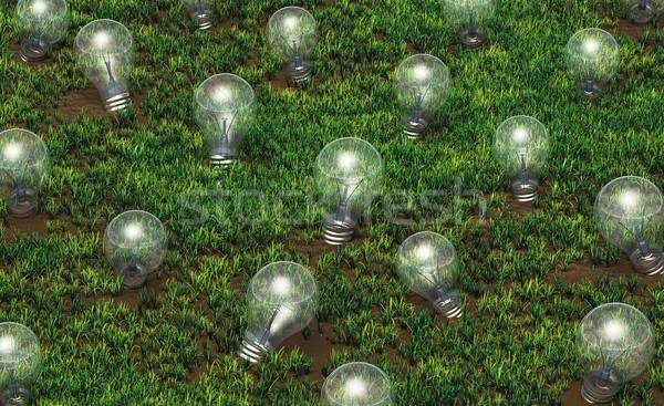 異なる サイズ 成長 考え 草で覆われた ストックフォト © TaiChesco