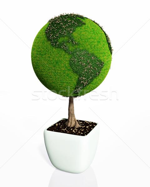 Planta como mundo pequeno forma Foto stock © TaiChesco