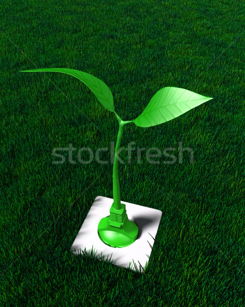 Small plant plugged in the ground Stock photo © TaiChesco