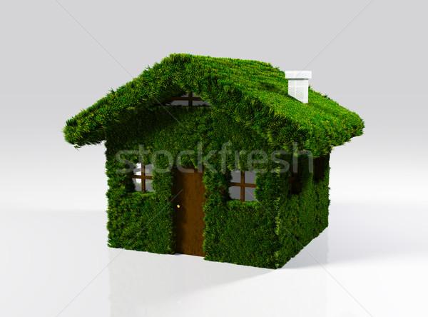 Ev çim küçük bütün duvarlar Stok fotoğraf © TaiChesco