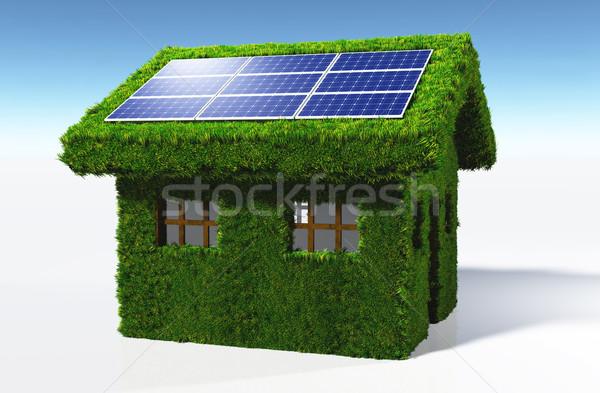 Gramíneo casa painéis solares pequeno coberto grama Foto stock © TaiChesco