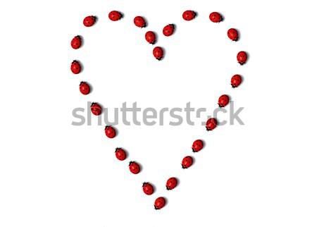 формы сердца Top мнение один Сток-фото © TaiChesco