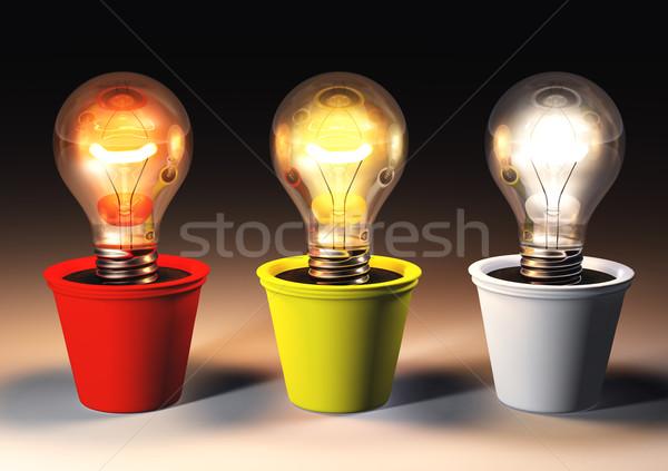 üç farklı ampuller ışık renk büyüyen Stok fotoğraf © TaiChesco