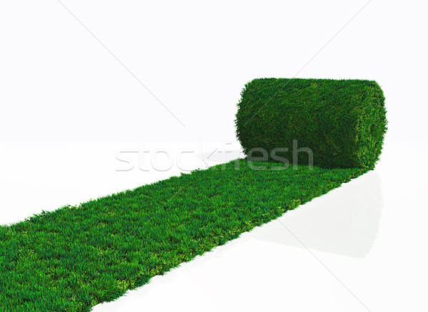 one roll of grass carpet Stock photo © TaiChesco