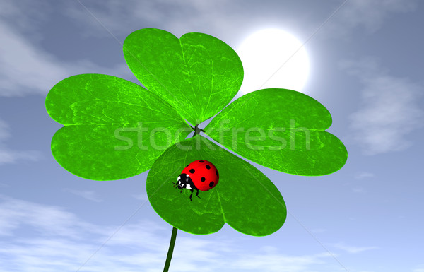 Ladybird on a four-leaves clover Stock photo © TaiChesco