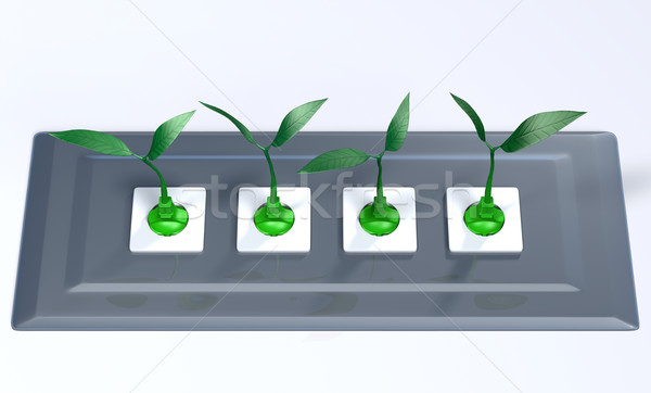 Small plants plugged in a support panel Stock photo © TaiChesco