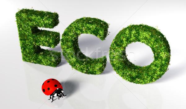 Eco texto coberto grama flores pequeno Foto stock © TaiChesco