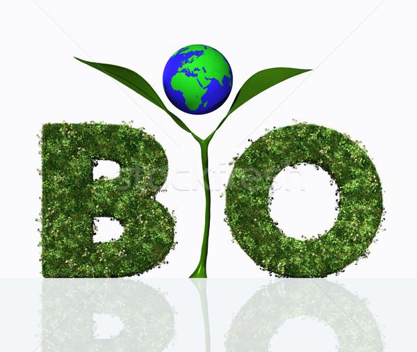Bio woord plant wereld brieven Stockfoto © TaiChesco