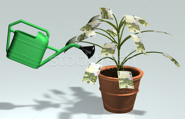 small tree with 100 euro banknotes watered in a vase Stock photo © TaiChesco