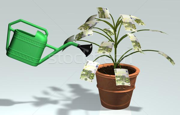 Pequeno árvore 100 euro notas vaso Foto stock © TaiChesco