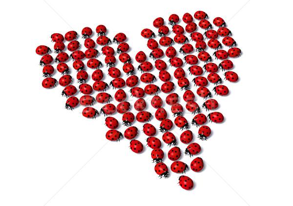 Joaninhas forma forma de coração grupo indicação acaso Foto stock © TaiChesco