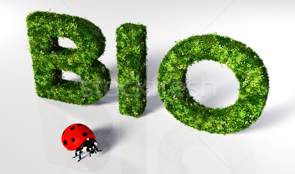 Ladybirds with bio text Stock photo © TaiChesco