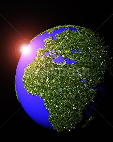 Европа Африка покрытый трава 3D Сток-фото © TaiChesco