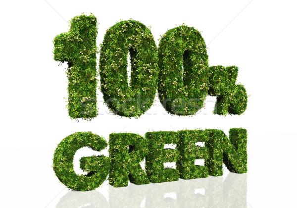 один сто процент зеленый слов Сток-фото © TaiChesco