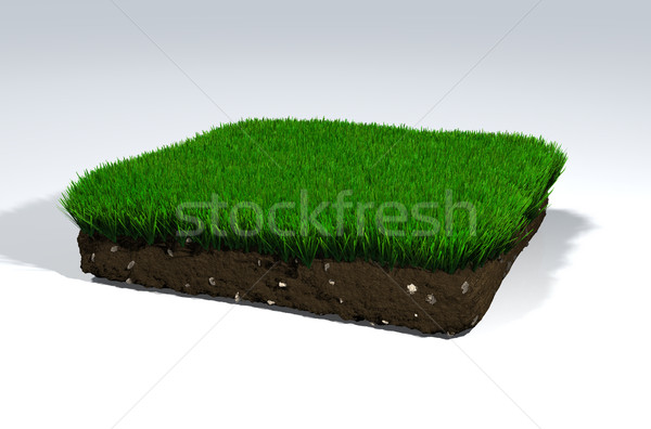 Clod of soil Stock photo © TaiChesco