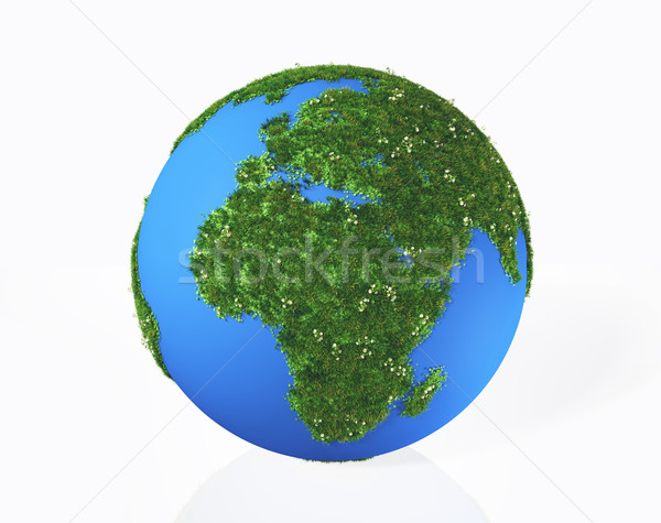 the continents Europe and Africa are covered by grass and flower Stock photo © TaiChesco