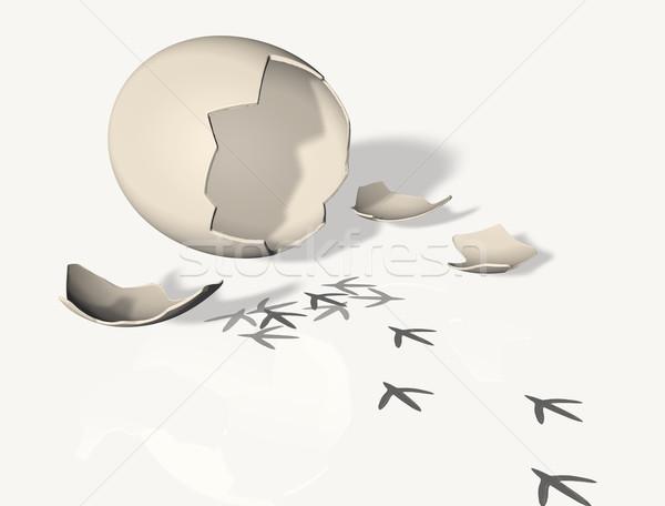 壊れた 卵殻 足跡 新しく 生まれる ひよこ ストックフォト © TaiChesco